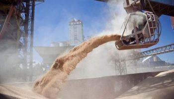 Misión comercial de Agroindustria: destacan nuevas oportunidades para Argentina en Egipto
