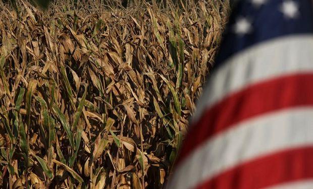 Estimaciones previas al informe del USDA.