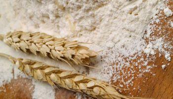 La molienda de trigo del primer cuatrimestre es la más alta de los últimos cinco años
