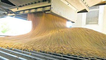 Molienda de soja durante agosto registró una merma del 6,32%