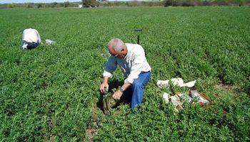 Cómo pueden obtener el certificado para circular los profesionales del agro y las condiciones que deben cumplir