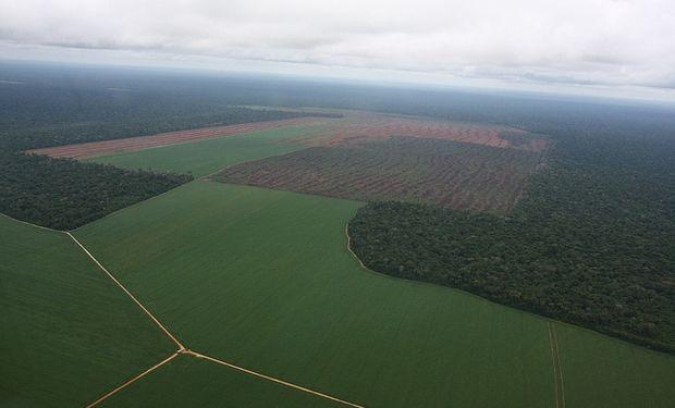 """""""Veremos con AFIP si el agro declara lo que se nota en la imagen satelital"""""""""""