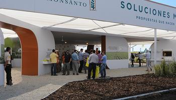 Monsanto presenta una tecnología de caracterización ambiental de híbridos en 3D