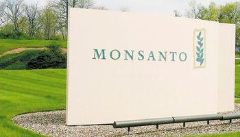Monsanto revisará sus planes de negocios en el país