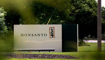 Monsanto emitió un comunicado tras el fallo en Estados Unidos