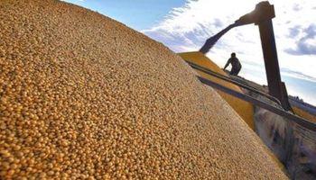 El arrendamiento agrícola es el más alto de las últimas siete campañas