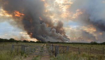 Nuevos incendios en La Pampa se cobran miles de hectáreas