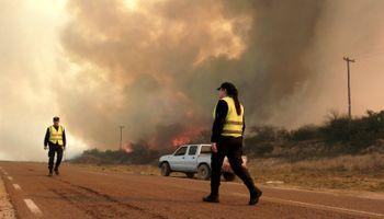 La Pampa: incendios se cobran miles de hectáreas y animales