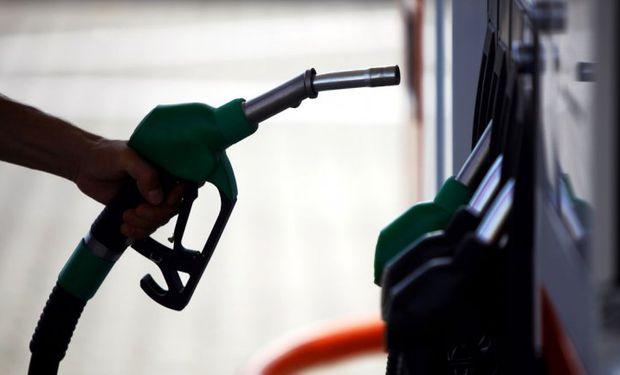 """""""El plan del Gobierno de Mauricio Macri es llevar la mezcla de bioetanol con combustible del 12 por ciento actual hasta un máximo de 26 por ciento""""."""