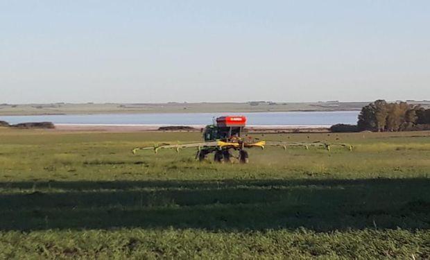 """Investigadores argentinos ensayan con partículas """"invisibles"""" para potenciar cultivos"""