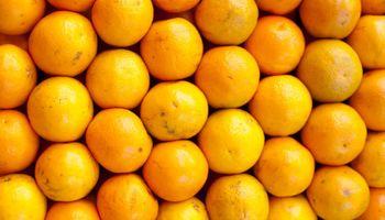 Ingresó el primer cargamento de naranjas argentinas a Brasil