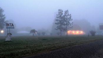 Lluvias débiles, nieblas y neblinas: día por día, qué dice el pronóstico del tiempo para los próximos días