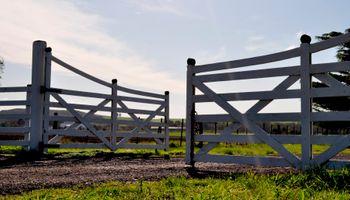 El negocio agrícola: ¿conviene dar el campo en alquiler?