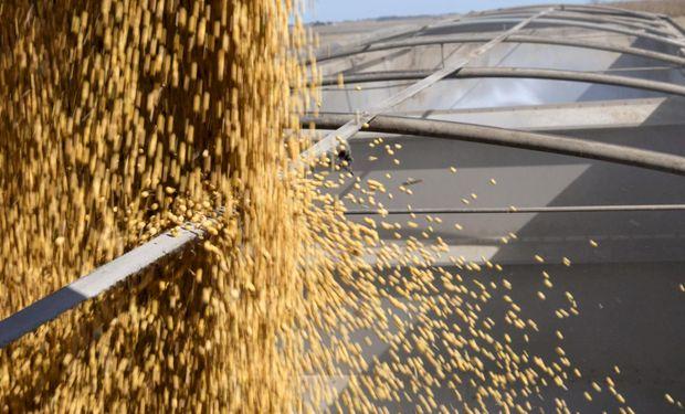 Repuntan las exportaciones de soja por mayores compras de China.