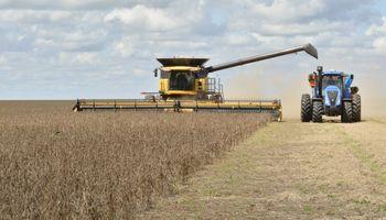 """Mercosur-UE: """"El impacto positivo se registrará en el sector agroindustrial"""""""