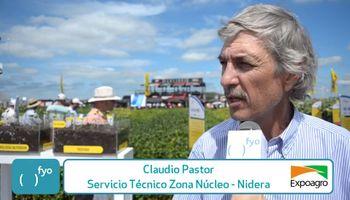 Maíces y sojas de Nidera engalanaron Expoagro