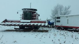 Sorpresa: imágenes de una nevada histórica