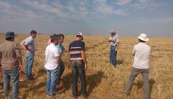 Avanza el diseño de la norma IRAM de Buenas Prácticas Agrícolas