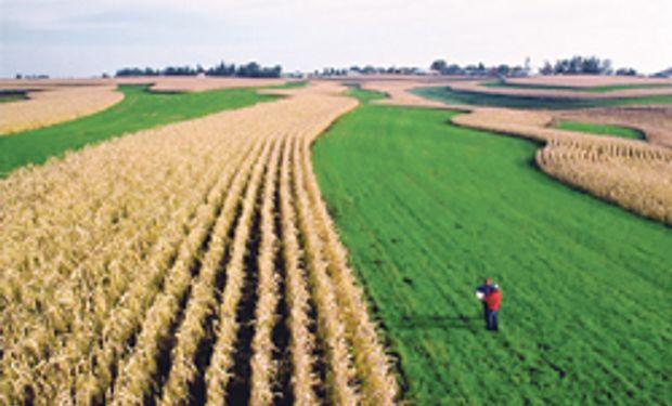 Las materias primas agrícolas registran bajas considerables