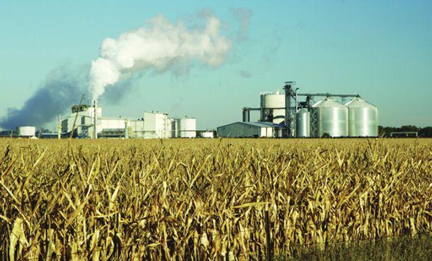 Producción de etanol subirá 40% este año