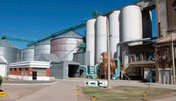 Cajas negras en la industria molinera: buscan controlar una evasión de $5.000 millones