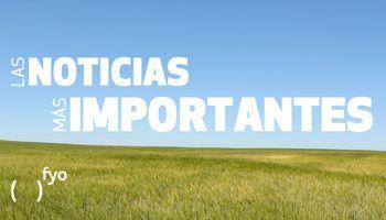 Temas del día: siembra de girasol, exportación de granos, reservas de humedad, frío, cerealeras