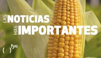 Temas del día: maíz, trigo nuevo, clima seco, producción de carne, transporte de carga, BCR