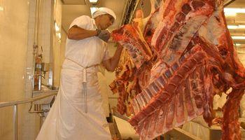 Novillo gordo en Uruguay, con precios muy cercanos a los récord históricos