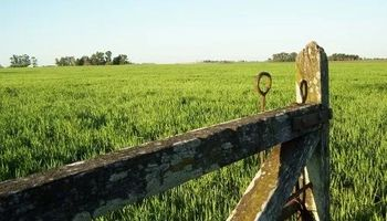 Nuevo RUCA: simplifican trámites para los operadores del agro
