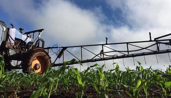 Cómo la correcta nutrición de cultivos permite producir más y mejores alimentos