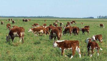 Productores rurales de Santa Fe pidieron al gobernador una solución a los delitos rurales