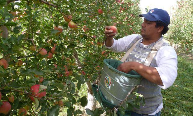 La manzana roja casi duplicó su brecha al subir de 8,1 veces en noviembre a 16 veces en diciembre.