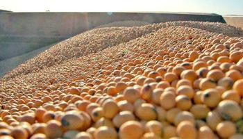 Los precios de los granos en Rosario sin la referencia de Chicago