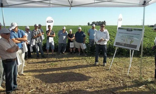 Monsanto se propuso que en 2019 la soja Intacta se siembre en un área sudamericana de 30 millones de hectáreas.