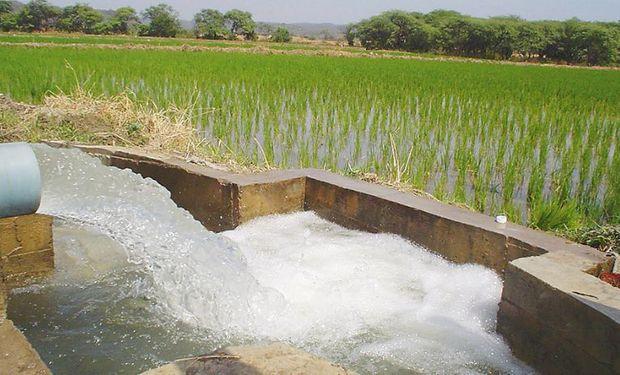 El plan incluye proyectos de rehabilitación de sistemas de riego y drenaje.