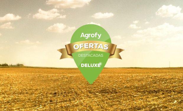Descubrí las mejoras ofertas online en Agrofy.