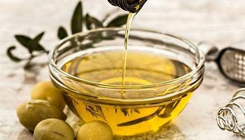 La Rioja: productores de olivo, preocupados por las importaciones