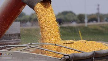 El efecto Macri incide en el mercado sojero