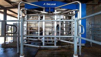 Tambo robótico: la tecnología de precisión que desafía a la lechería
