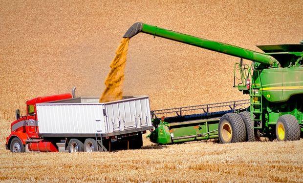 El reporte del USDA de mayo será el primero que traerá cifras oficiales en cuanto a oferta y demanda mundiales para el ciclo 2015/16.
