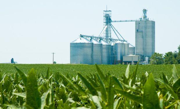 Soja y maíz: el mercado de granos está expectante del área que sembrará Estados Unidos en la campaña 2021/22