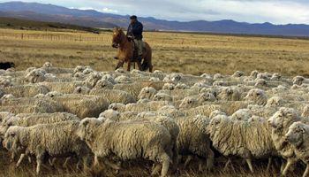 La Mesa de Enlace coincide en que a la carne ovina le falta marketing