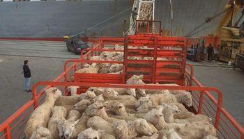 Uruguay cerca de ingresar carne con hueso a Estados Unidos