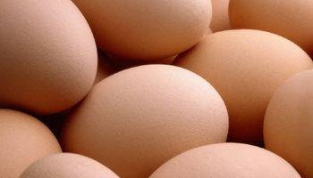 Negocio de los ovoproductos sigue complicado