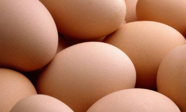 El negocio de los ovoproductos sigue complicado.
