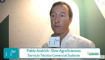 Dow AgroSciences también apuesta al trigo
