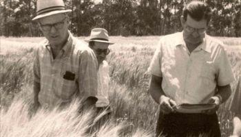 """Borlaug: el INTA publicó más de 10 artículos del """"padre de la Revolución Verde"""""""