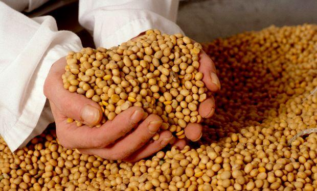 El nuevo sistema contempla que los análisis sobre la soja lo realicen cámaras arbitrales, laboratorios y probablemente acopios y puertos.