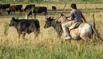 Trabajadores rurales acordaron un nuevo aumento: qué actividades alcanza
