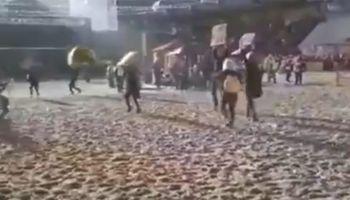 Irrupción en Palermo: grupo de activistas invadió la pista central de La Rural
